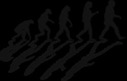 Mensch und Primat - unterschiedliche Ernährung